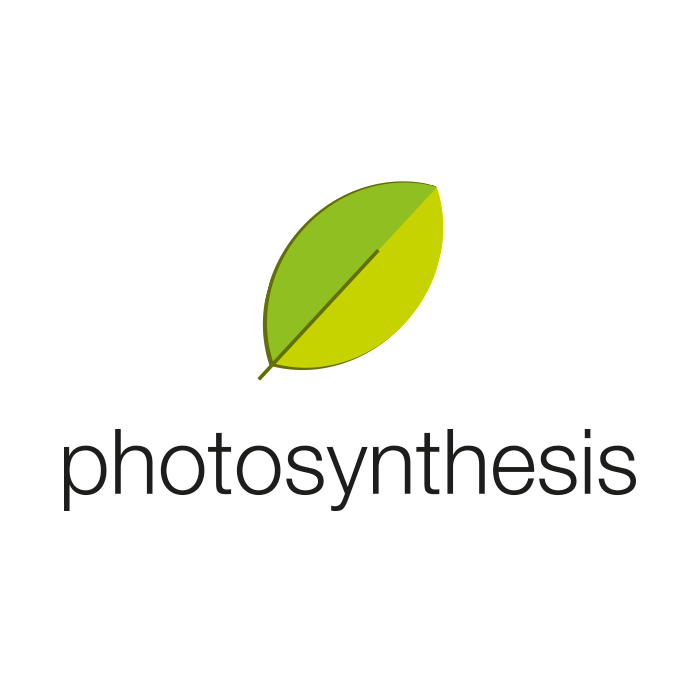 Photo Synthesis